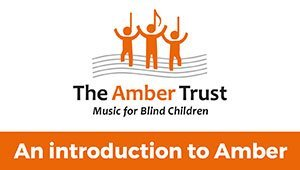 Introducing Amber
