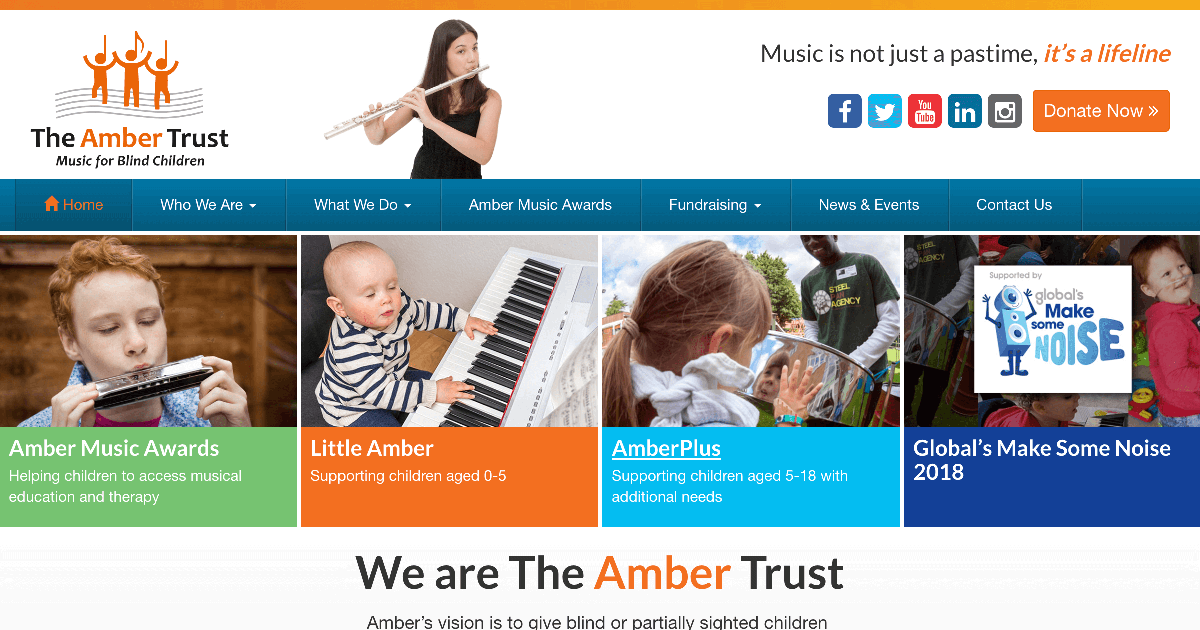 Amber Trust Homepage
